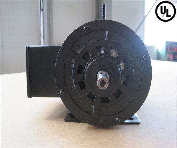 TEFC 240 V AC Voltage and Synchronous Motor Type AC motor