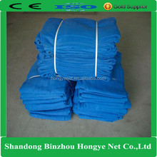 Hongye HDPE blue color protective scaffolding mesh net