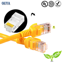 Digital TV special cable internet wire