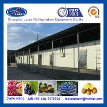 Fresh Fruit and Vegetables walk in cold storage room