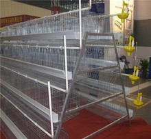 Chicken farm/poultry cage with full automatic attached equipments