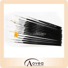 Acrylic UV Gel Diy Design Nail Art Brush Set Painting Pen Tips Tools kit 15 Pcs
