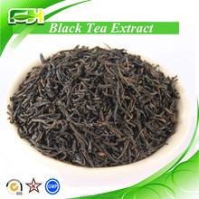 100% Natural Black Tea P.E, Black Tea P.E Powder, Black Tea P.E