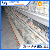Hot sale and automatic layer chicken battery cage / chicken layer cage price/ chicken transport cage for sale