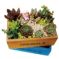 2015 best-selling home decor handicrafts wooden FlowerBox