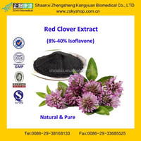GMP Certified Manufacturer Supply Natural Red Clover Extract Powder