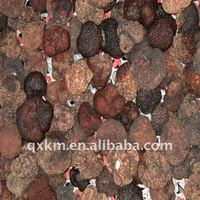 frozen Tuber Indicum truffle from China