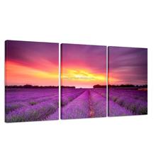 Triptych Lavender Digital Printing Canvas Art for Dropship