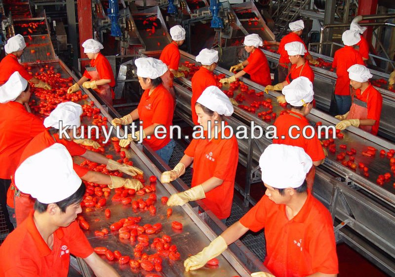 tomato paste best price with drum packing/Wooden bins/Tin Packing