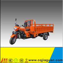 Petro Air/Water Cooled 3 Wheeler Carrying On Sale