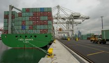 Wholesale Shipping service freight from China to Durban,Capetown and Elizabeth Africa