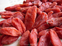 2015 dried fruit thailand organic dried goji berry/freeze dried fruit