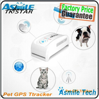 Factory Supplier Fashion Mini GPS Tracker for small PET Dog Cat GPS Tracker Locator Free Collar Free Online Tracking
