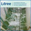 Litree agua de lluvia filtro de como pre-tratamiento para sistema de ósmosis inversa