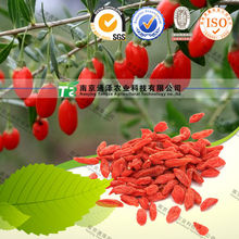 Lycii certified Organic tonic wolfberry dry goji berry