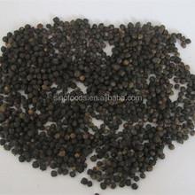 seeds of Malabar spinach