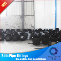 pipes a234wpb fittings carbon steel ecc reducers