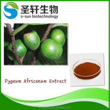 Pure plant extract pygeum africanum extract for men care