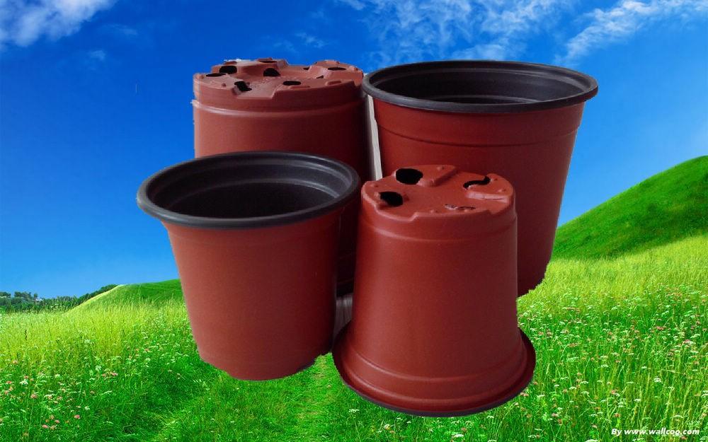 7 Fresh Cheap Gardening Pots Kelsey Bass Ranch 20762