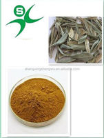 Natural olive leaf for extracting Oleuropein powder