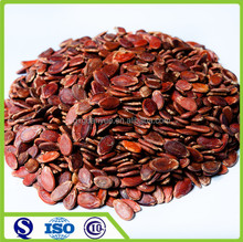 Red melon seeds from China Size 7cm 8cm
