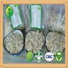 China Shine Skin Fresh Pumpkin Seeds 10mm 11mm 12mm