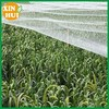 HDPE anti bird net for fruit protection