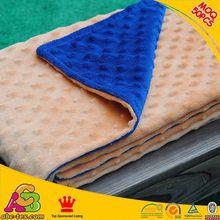 10PCS MOQ customized designs 2 layers Oeko Tex 100 Europe fashion polyester microfiber blanket