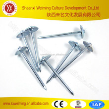 Alibaba China factory metal electric galvanized roofing nails