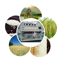 Durable rice color sorter , other agricultural machinery also available From Mingder
