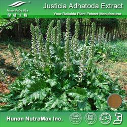 Hot sale Plant extract Adhatoda vasica leaves extract/Adhatoda vasica nees extract/Adhatoda vasica extract
