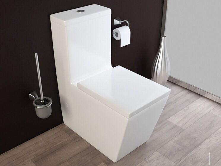 030 carr toilette si ge conception sanitaires d 39 une seule pi ce lavage grande eau de toilette for Toilette carrele