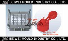 Injection plastic flip top cap mould