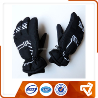 Top Quality Fashion Winter Heated Gloves