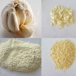 Bulk Garlic Products for Sale