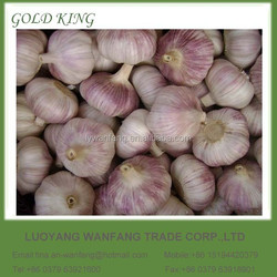 China Wholesale Garlic White Garlic Fresh Natural Garlic