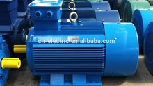 3 Phase Asynchronous Induction Electric Motor
