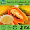 Drink making dry papaya fruit juice powder
