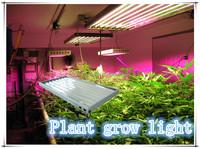 T5 HO fluorescent grow lamp
