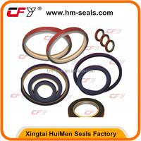 oil seal DKB ,DKBI ,OUY,IUH,TCN for Excavating