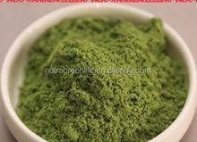 Health Food Ingredients Brown Powder Ratio 10:1 Broccoli