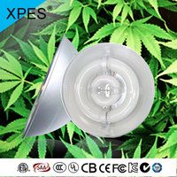 Berry cuttings/hemp plant cuttings lamp 1000w cob lvd grow light high power grow lvd light high PPFD lvd grow lighting