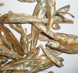 Wholesale Kinds of Sun Dried fish:dried fish for pet