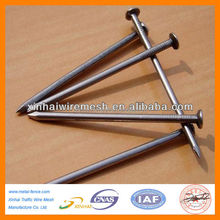 Common Nails/Nail, Common wire nail, Common iron Nails