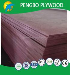 1220x2440x3mm commercial plywood poplar board for fire door for Sri Lanka market