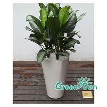 Garden planter,flower pots,ceramic planter,plastic pot for plant,planter