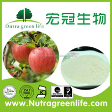 Natural Apple Extract powder with Proanthocyanidins, Polyphenol, Phlorizin. Chlorogenic Acid