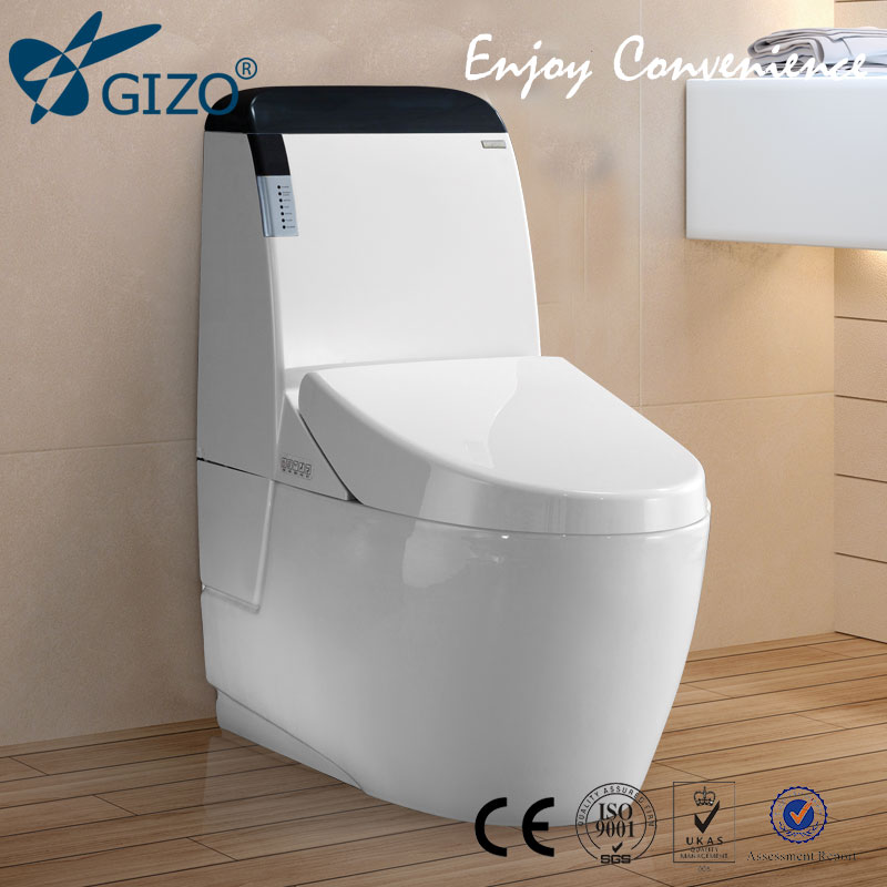 New design fm radio colored toilet bowl brand modern for New washroom designs