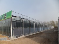 greenhouse roofing plastic, polycarbonate greenhouse plastic roofing cheap big sale