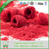 Fashionable new products dried goji berry fruit